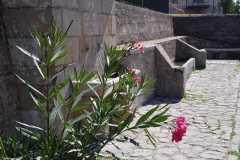 fontana-vecchia-2